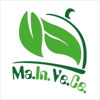 logo mainvece